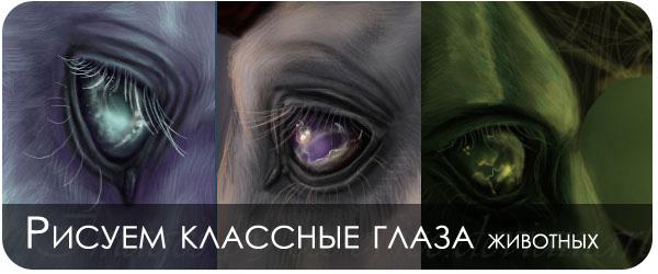 Рисуем глаза животных