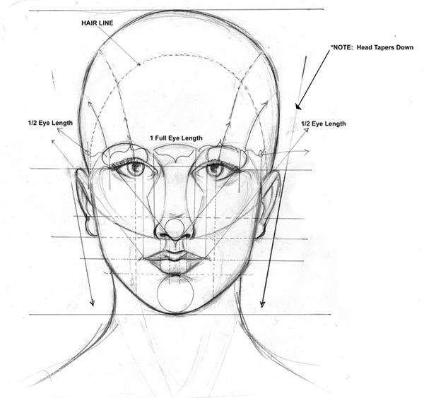 рисовать лицо человека