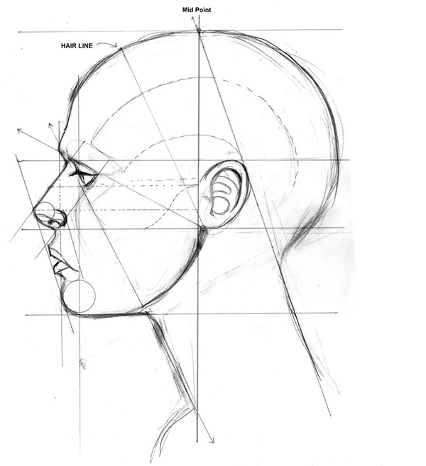 Line Drawing Human Face : Как рисовать лицо человека Рисование в Фотошопе
