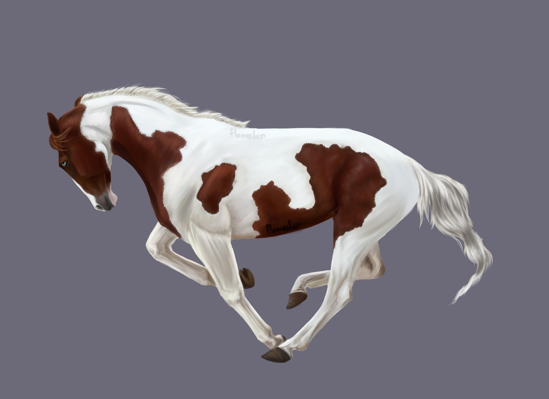Лошади нарисованные в саи