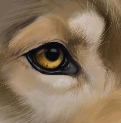 Как рисовать волка