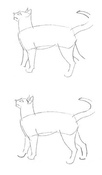 Картинки с кошками нарисованные 1 кошка стоит на 4 ногах легкие