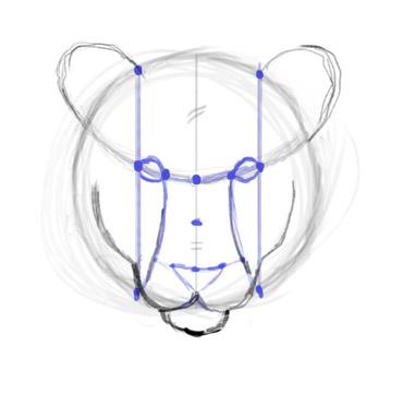 Как нарисовать морду/голову тигра